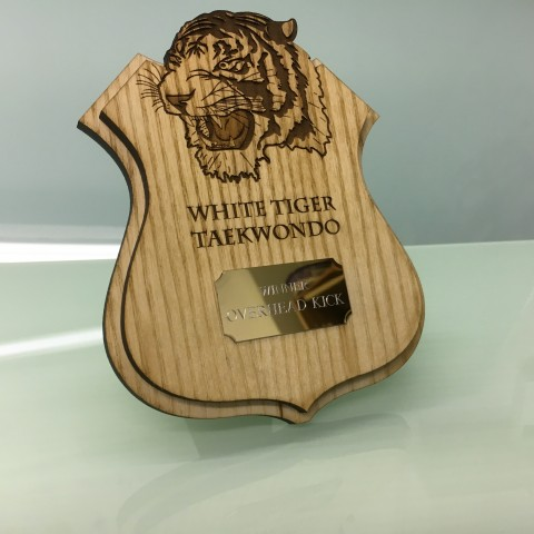 Bespoke Wooden Shield Trophy contact sport