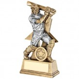 Cricket Award For Batsman - 3 sizes