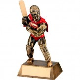 Cricket hero award
